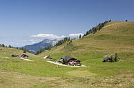Austria, View of alp pasture at Postalm - WW002610