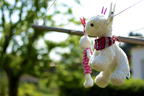 Germany, Hesse, Frankenberg, Cuddly toys hanging on washing line - MHF000084