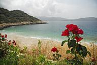 Turkey, Antalya, View of beach with red roses - MIZ000046