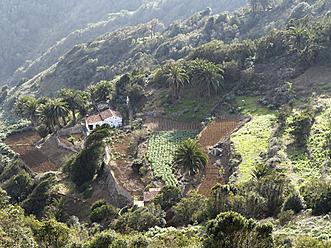 Spain, La Gomera, View of Cumbre de Chijere near Vallehermoso - SIE003167