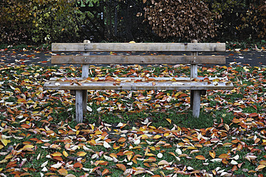Germany, Bavaria, Park bench with autumn leaves - AXF000415