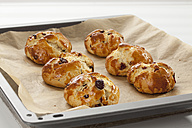 Cranberry scones on baking sheet in tray, close up - CSF016387