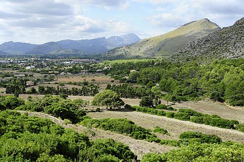 Spain, View of Agrarian landscape at Port de Pollenca - MIZ000209