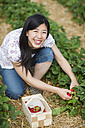 Germany, Bavaria, Young Japanese woman picking fresh strawberries in strawberry field - FLF000202