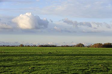 Netherlands, View of landscape between Gouda and Bodegraven - MIZ000174