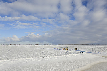 Netherlands, View of Polder covered with snow betwween Gouda and Bodegraven - MIZ000175
