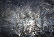 Austria, Window covered with  Ice crystal, close up - WWF002623