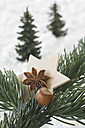 Star anise with hazelnut and wooden star on fir twig - ASF004831