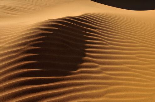 Algeria, View of sand dunes at Erg Tihoulahoun - ESF000254