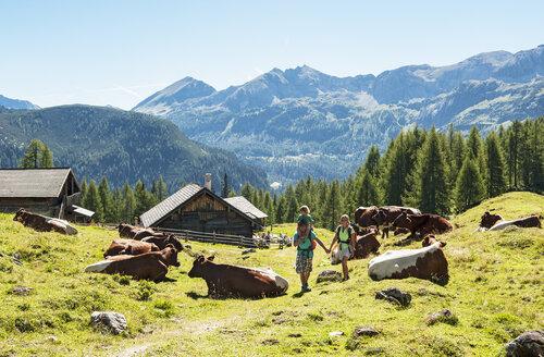 Austria, Salzburg Country, Family hiking at Altenmarkt Zauchensee - HHF004403