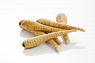 Fresh parsnips on white background, close up - CSF016711