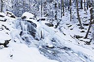 Germany, Bavaria, View of Riesloch Falls at Bavarian Forest - FOF004837