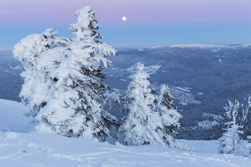 Germany, Bavaria, Moonrise on summit of mountain at Bavarian Forest - FO004865