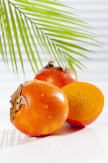 Kaki Persimmon with palm leaf, close up - CSF017446
