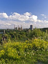 Germany, North Rhine Westphalia, Bottrop, View of Prosper Coke in spring - AKU000053