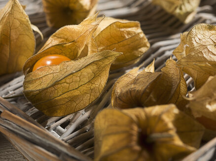 Physalis in basket, close up - CH000008