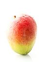 Fresh mango on white background, close up - MAEF006112