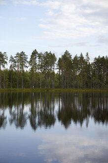 Sweden, View of lake at Dalarna - TKF000043