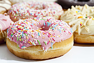 Variety of doughnuts topped with icing and sprinkles on white background - CSF017915