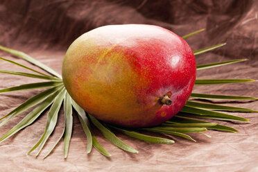 Mango on palm leaf , close up - CSF018045