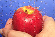 Human hand holding apple with waterdrops, close up - JTF000336
