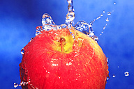 Apple with waterdrops against blue background - JTF000338