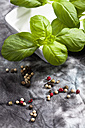 Basil herb with colorful peppercorns on grey backgrounds, close up - CSF018091