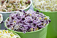 Mixed vegetable sprouts in container, close up - CSF018133