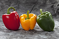 Red, yellow, green peppers on grey background, close up - CSF018195