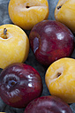 Red and yellow plums, close up - CSF018228