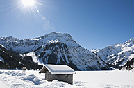 Austria, View of Tannheim Alps, wood hut in foreground - UMF000603