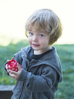 Austria, Portrait of boy, smiling, close up - LF000505