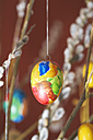 Hanging eastereggs, close up - MHF000153