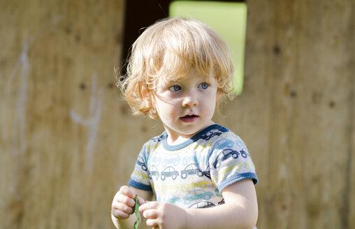 Austria, Boy holding balloon, looking away - LF000507