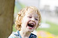 Austria, Boy laughing, close up - LF000514