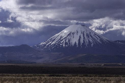 New Zealand, View of Ngauruhoe volcano - MR001391