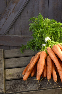 Germany, Bunch of carrots on wood - ONF000150