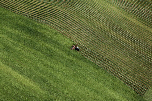 Germany, Harvester on green field - FB000001