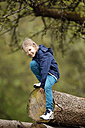 Germany, Baden Wuerttemberg, Portrait of girl climbing on wooden logs, smiling - SLF000140