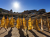 Portugal, Stockfish for drying at Camara de Lobos near Funchal - AMF000202