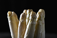 Bunch of white asparagus, close up - CSF019303