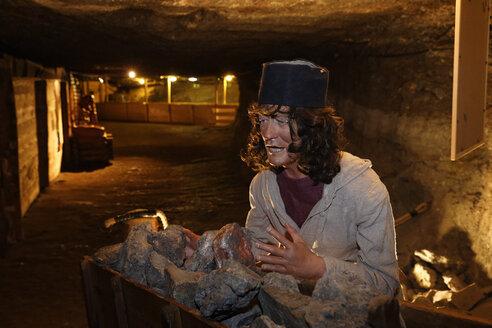Austria, Salzburg, Hallein salt mine - SIE003846