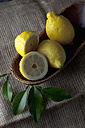 Lemons on tray with leaves, close up - CSF019377
