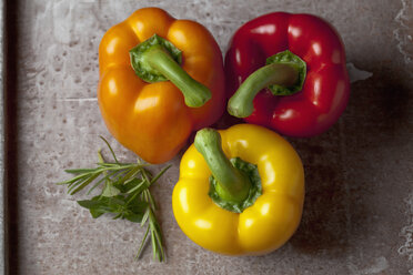 Capsicum with leaves, close up - CSF019364