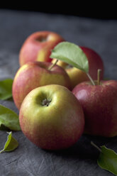 Red apples with leaves, close up - CSF019339
