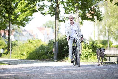 Germany, Bavaria, Mature man riding bicycle with Weimaraner dog, smiling - MAEF006827