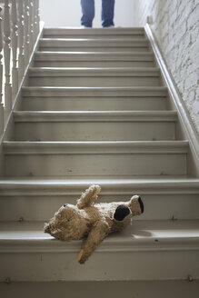 Teddybear on steps while man in background - FMKYF000333
