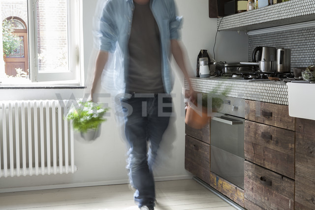 Mature man holding potted plant - FMKYF000303