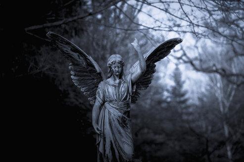 Germany, Cologne, Statue of angel at Melatenfriedhof - KJ000231