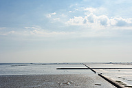 Germany, Schleswig Holstein, View of Wadden Sea - MJ000218